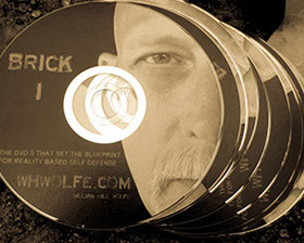 10 set dvd Bill Wolfes BRICK series. Original Defendo dvds. Release over a decaded ago.